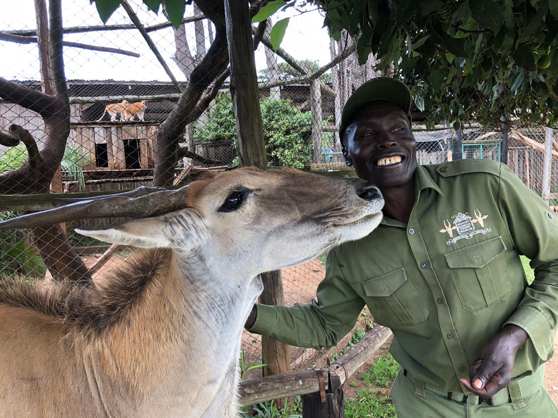 Feeding at mount kenya safari club