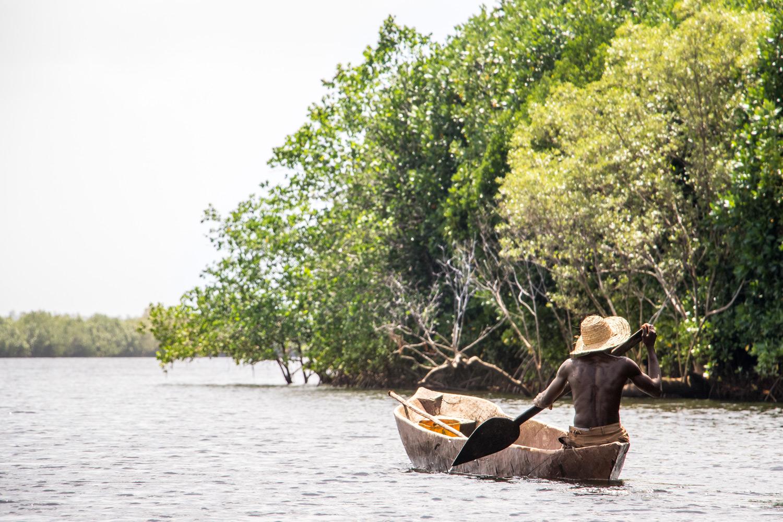 Mangrove Paddling Zanzibar